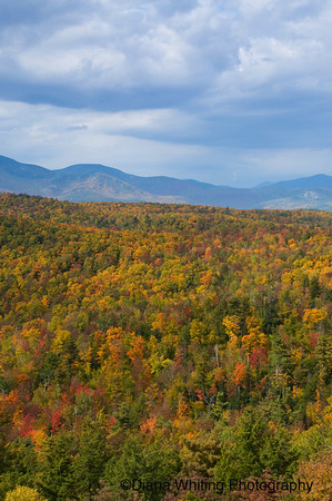 Eastern Adirondacks Fall