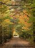 Back Roads Fall Adirondacks