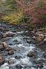 Adirondack Stream Fall