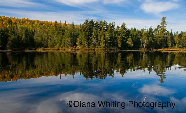 Deer River Flow Adirondacks
