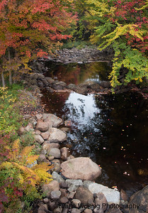 Adirondack Stream in the Fall
