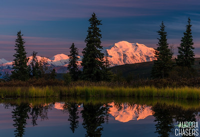 Denali lit up in Alpine Glow at Nugget Pond