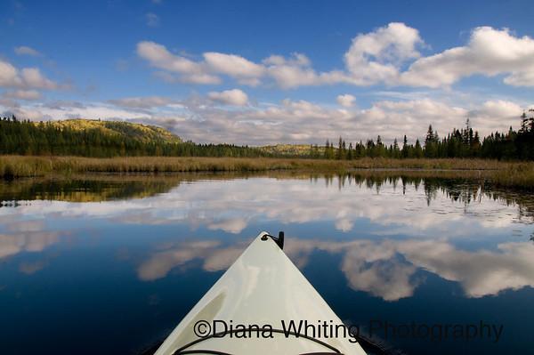 Kayaking in Costello Creek