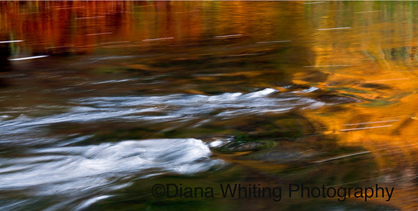 Oxtongue River Fall 2011