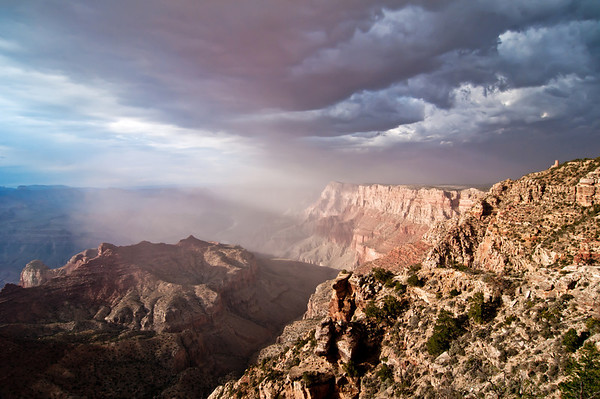 """""""The Watcher"""" - Arizona, Grand Canyon National Park   Recommended Print sizes*:  4x6  