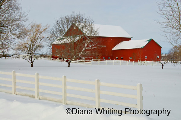 Red Barn Skaneateles Winter