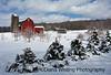 Finger Lakes Winter