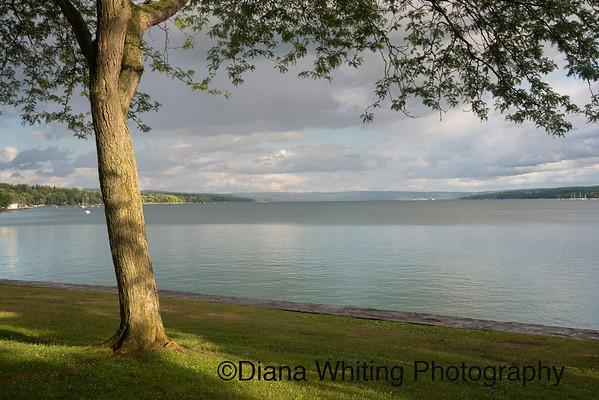 Skaneateles Lake From Thayer Park