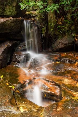 Nature's Flow