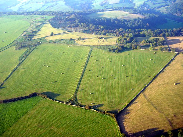 Somerset Seen from Above in The Summertime