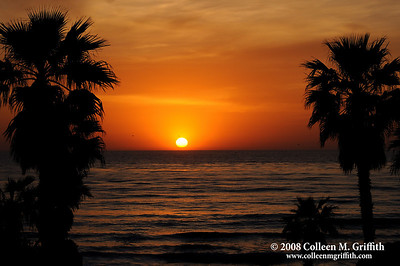 San Diego Sunset  © 2008 Colleen M. Griffith.  All Rights Reserved.  This material may not be published, broadcast, modified, or redistributed in any way without written agreement with the creator.  This image is registered with the US Copyright Office. www.colleenmgriffith.com www.facebook.com/colleen.griffith