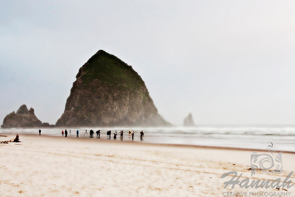 Row of photographers trying to take photos of the Haystack Rock early in the morning. Shot at Cannon Beach, Oregon Coast  © Copyright Hannah Pastrana Prieto