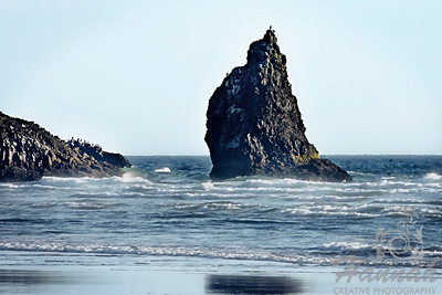 View of the rock formation beside Haystack Rock with seagulls resting on top. Located in Cannon Beach, Oregon Coast  © Copyright Hannah Pastrana Prieto