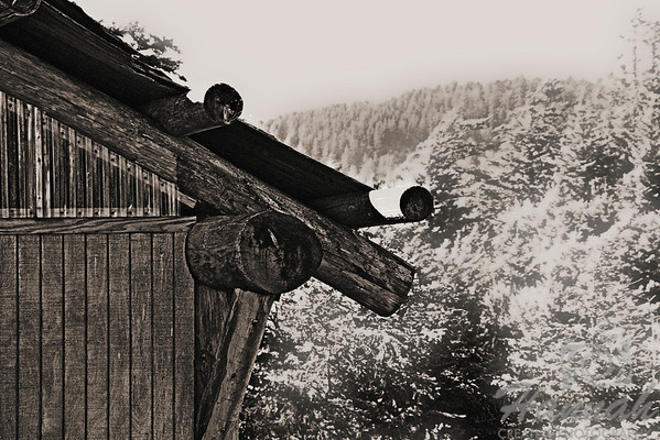 A monochrome shot of a part of a wooden cottage found at Ecola State Park Cannon Beach, Oregon Coast  © Copyright Hannah Pastrana Prieto