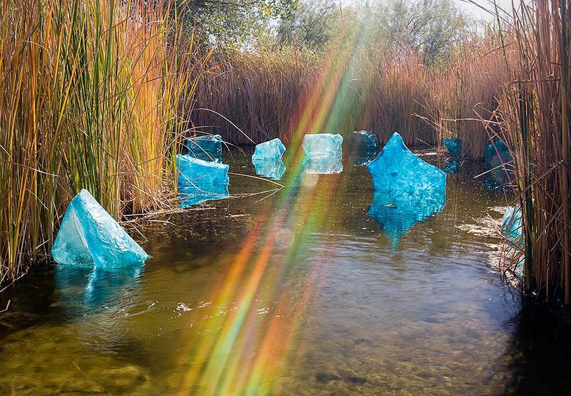 Chihuly Glass <br /> Desert Botanical Garden <br /> Phoenix, Arizona