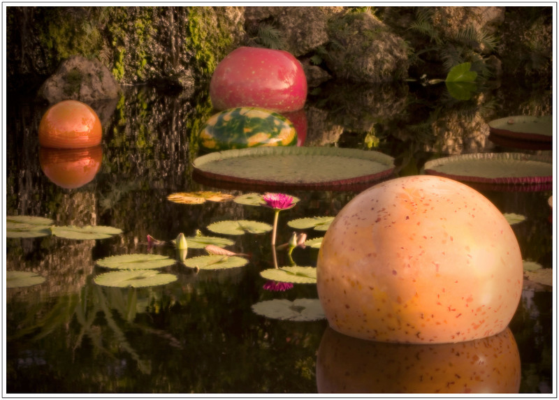 Dale Chihuly at Fairchild Tropical Botanic Garden<br /> Coral Gables, Florida
