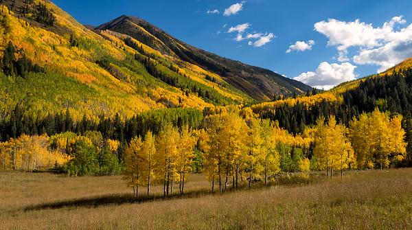 Fall color in the Elk Range