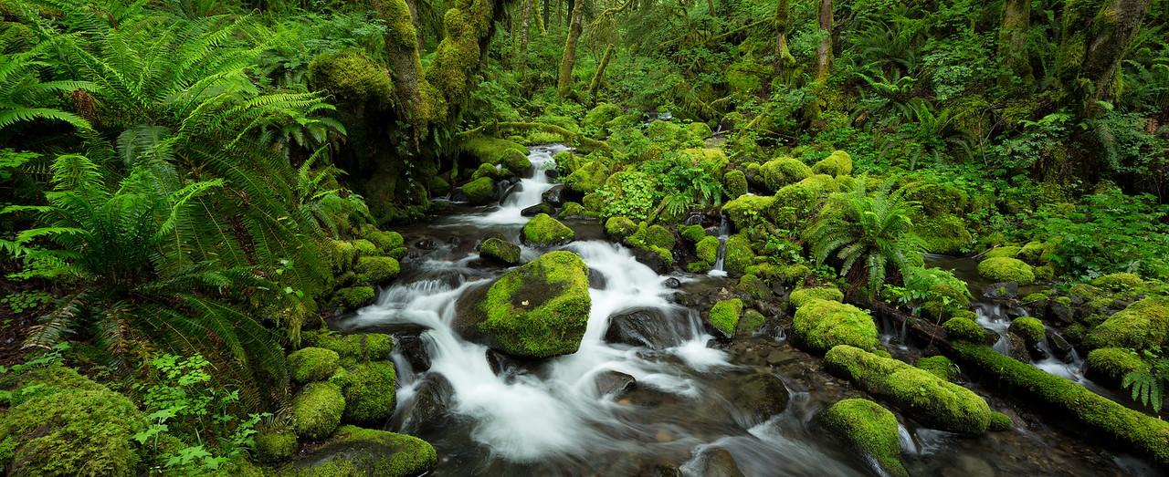 """""""Ruckel Creek Panorama"""""""