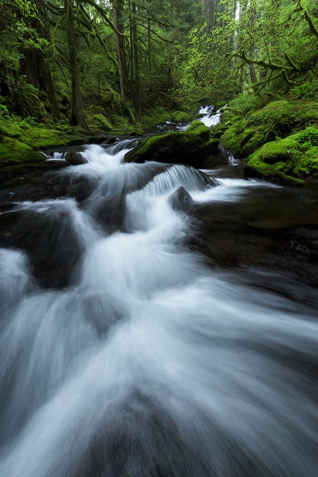 """Gorge Creek"""