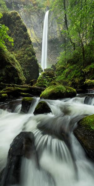 """""""Elowah Falls Panorama"""""""