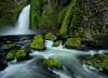 """""""Wahclella Falls"""""""