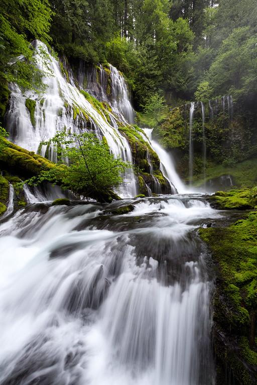 """""""Panther Creek Falls"""""""