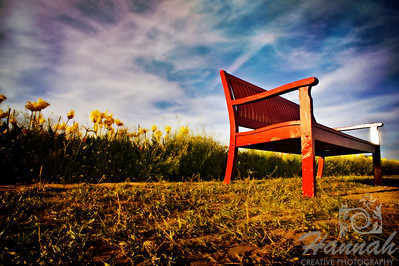 A textured image of a reddish brown bench at a tulip field taken at Wooden Shoe Tulip Farm in Woodburn, OR  © Copyright Hannah Pastrana Prieto