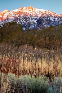 The snow-capped peaks of the Eastern Sierras over the Alabama Hills at dawn.