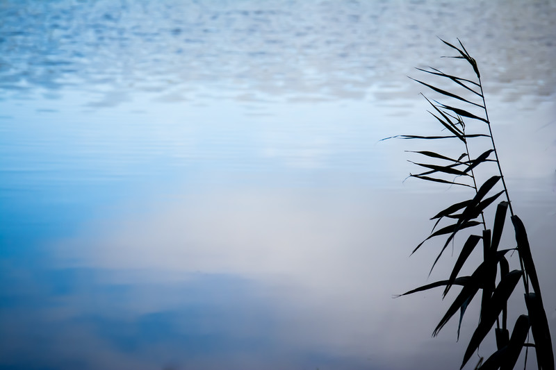 Sky Reflection in Rippled Water