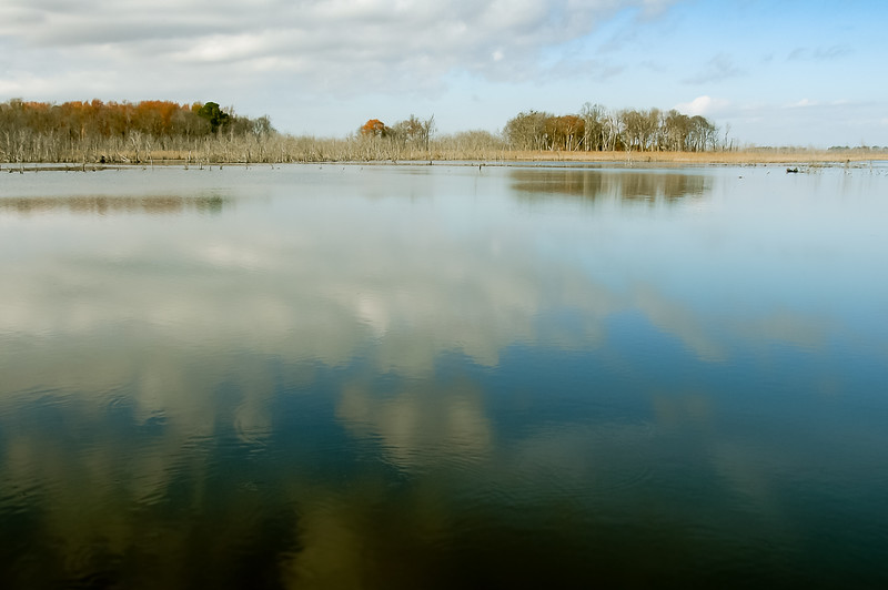 Fall Marsh Reflection