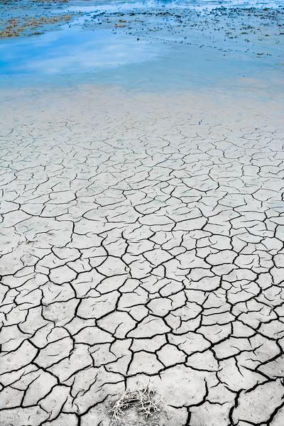 Marsh Tidal Flats