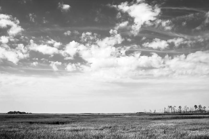 Blackwater National Wildlife Refuge Big Sky