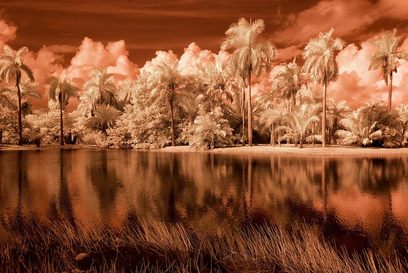 Infrared False color