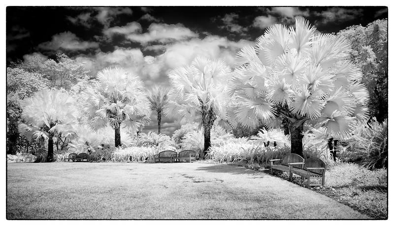 Fairchild wonderland