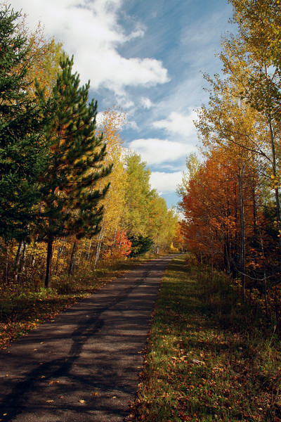 Willard Munger bike trail, near Cloquet MN.