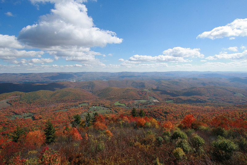 The view from Bald Knob on a beautiful Fall day.Elevation: 4,842