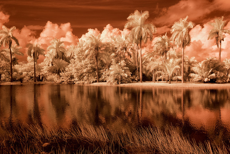 Infrared False color