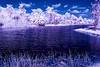 false color landscape