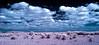 Everglades tableau False Color infrared