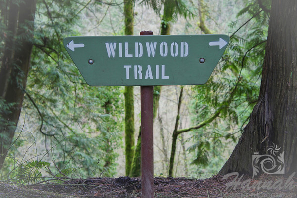 Wildwood Trail signage at Forest Park in Portland, Oregon  © Copyright Hannah Pastrana Prieto
