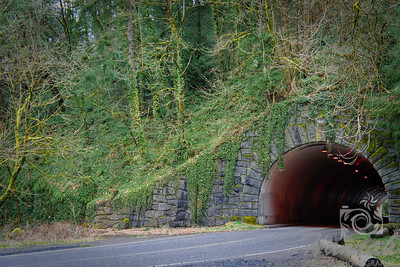 Road tunnel located at Forest Park in Portland, Oregon   © Copyright Hannah Pastrana Prieto