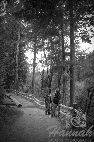 Fine arts of father and son bonding at a hiking trail in Forest Park.  © Copyright Hannah Pastrana Prieto
