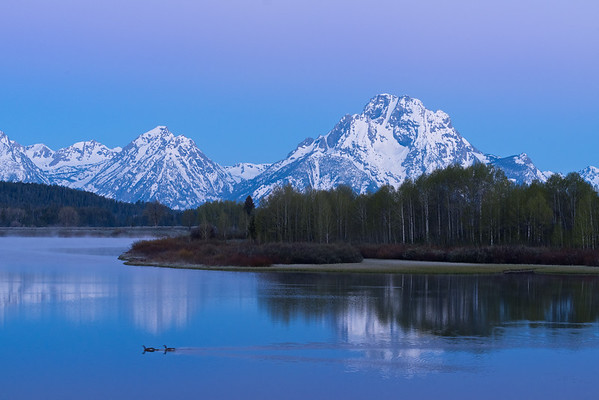 Sunrise with ducks at Oxbow Bend