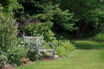 Bench from Meadowlark Botanical Garden