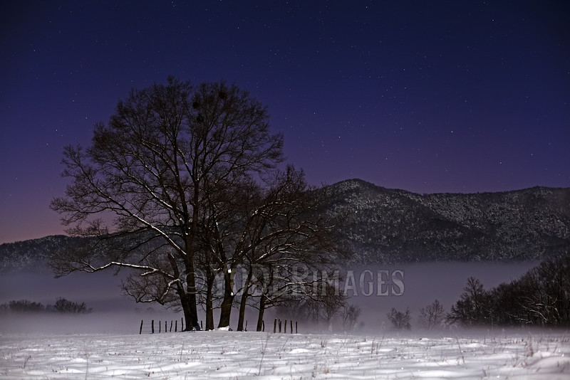 Stars over the LeQuire Cemetery, Cades Cove, Great Smoky Mountains National Park