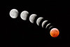 Total Lunar Eclipse, January 21, 2019<br /> Composite photo showing progression of eclipse into totality.