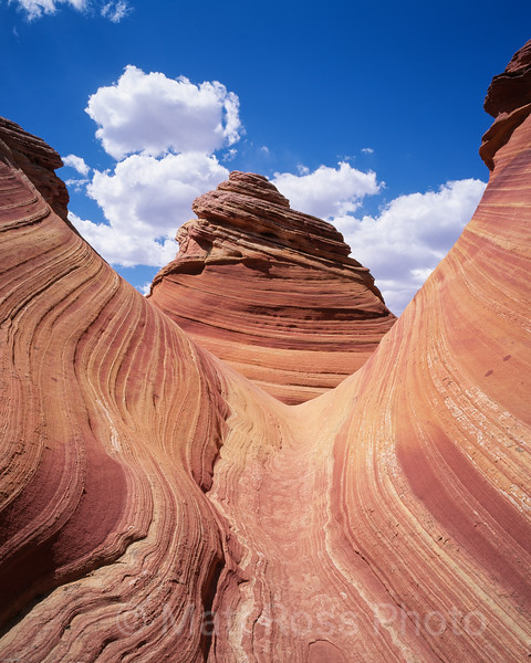 CENTER OF THE UNIVERSE, COYOTTE BUTTES, UTAH