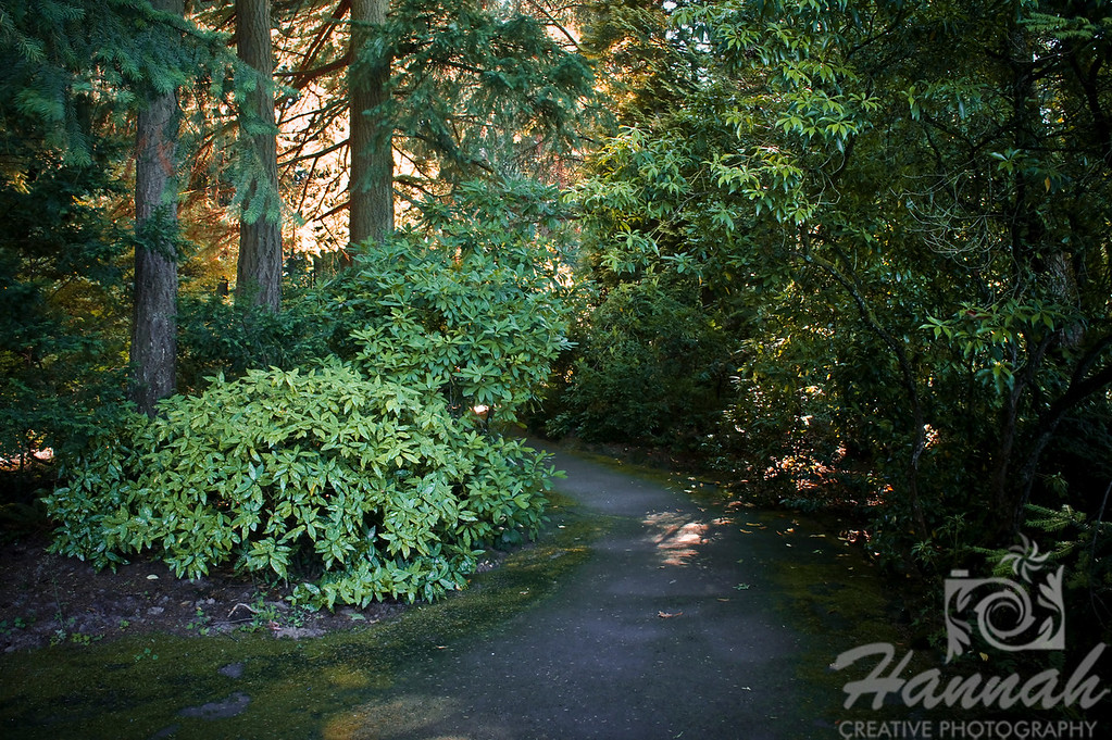 "Inspiring landscape, manicured gardens and walking paths  at ""The Grotto"" in Portland, Oregon  © Copyright Hannah Pastrana Prieto"