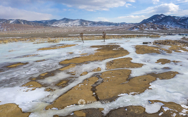 Two trees and a frozen river outside of Sagsai, Mongolia