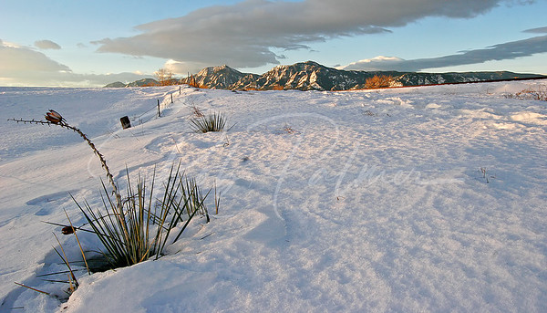 Winter Flatirons, Boulder, CO